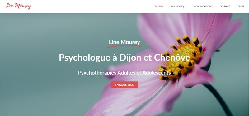 line_moure_psychologue_site_pro